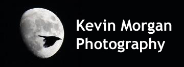 Kevin Morgan Photography